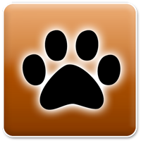 Branche Tierbetreuung